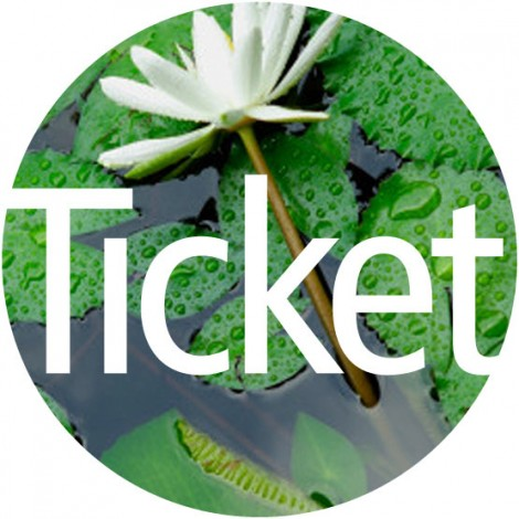 Name and logo for lifestyle consultants 'Ticket'
